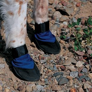 Cordura Dog Booties